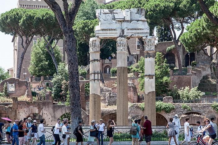 Caesarforum: Tempel der Venus Genetrix Rom