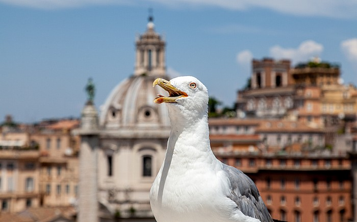 Monumento Vittorio Emanuele II: Möve Rom