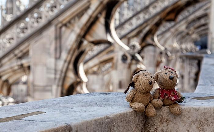 Mailand Mailänder Dom (Duomo di Santa Maria Nascente): Teddy und Teddine