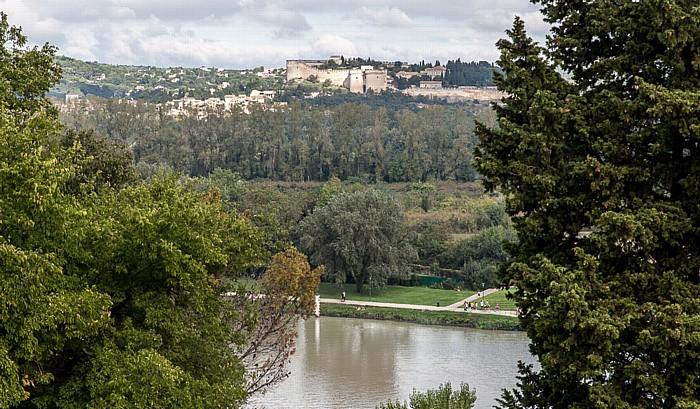 Avignon Blick vom Rocher des Doms: Rhone, Île de la Barthelasse