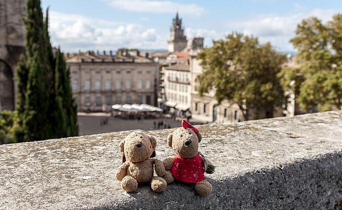 Avignon Intra-muros: Place du Palais - Teddy und Teddine