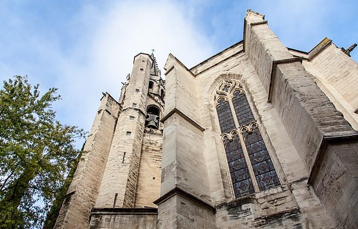 Intra-muros: Basilique Saint-Pierre d'Avignon