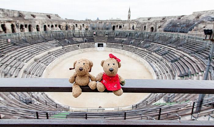 Amphitheater (Arènes de Nîmes): Teddy und Teddine