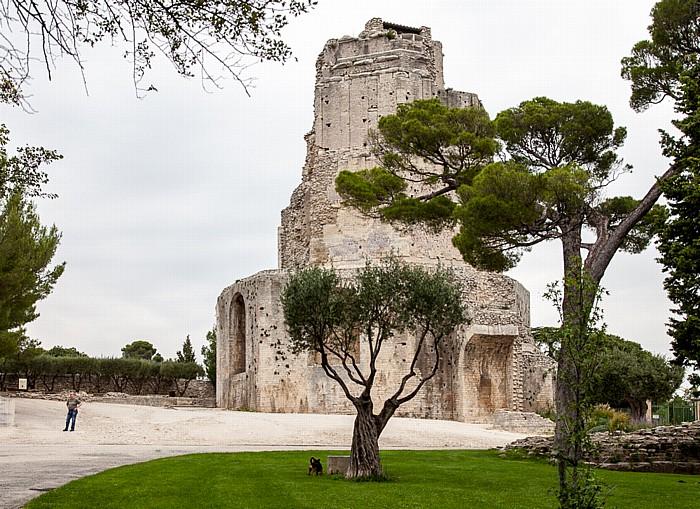 Nîmes Jardins de la Fontaine: Tour Magne