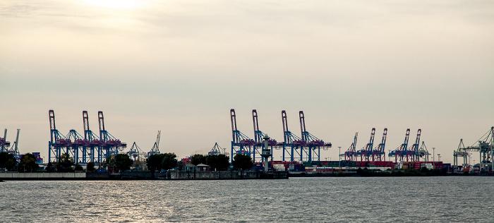 Hamburger Hafen: Containerterminal Tollerort Hamburg