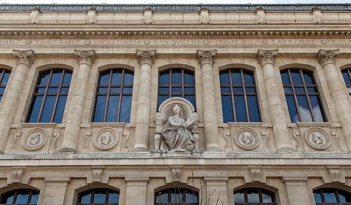 Paris Muséum national d'histoire naturelle (Grande galerie de l'évolution)