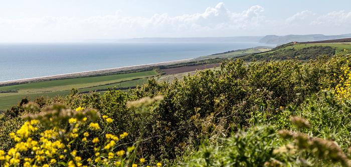 Dorset, Chesil Beach, Jurassic Coast, Ärmelkanal (English Channel)