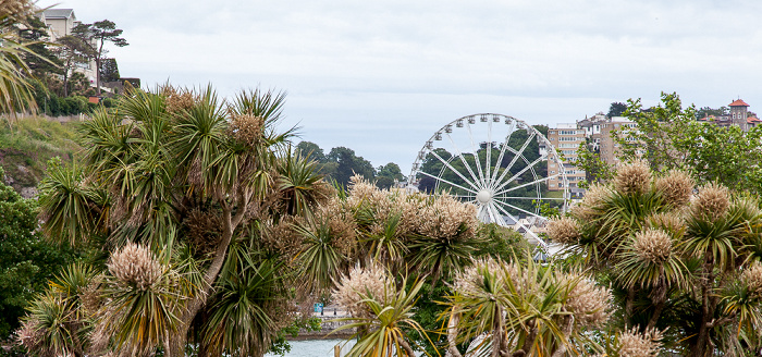 Torquay Abbey Park The English Riviera Wheel