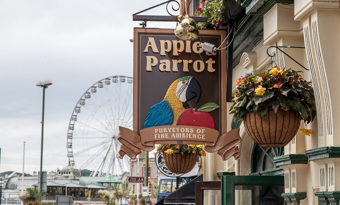 Torquay Torwood Street: The Apple & Parrot The English Riviera Wheel