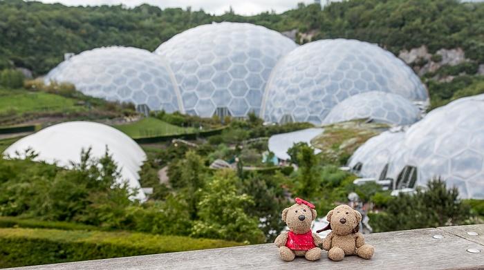 St Blazey Eden Project: Teddine und Teddy