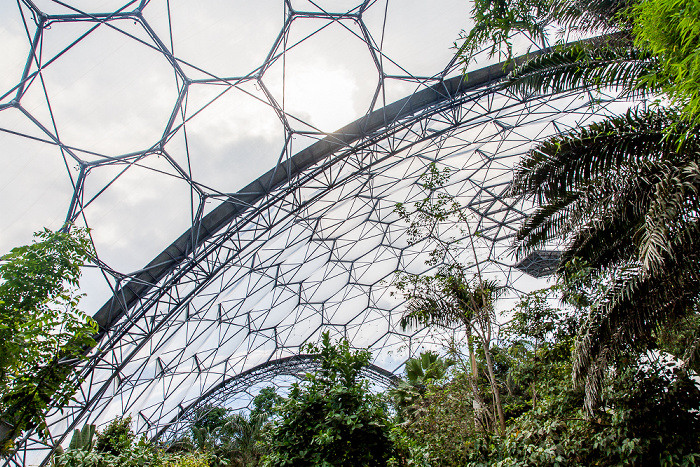 St Blazey Eden Project: Rainforest Biome