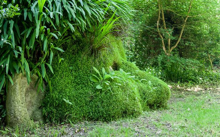 Mevagissey Lost Gardens of Heligan: Giant's Head