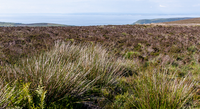 Exmoor National Park Dunkery Hill, Bristolkanal (Bristol Channel), Wales