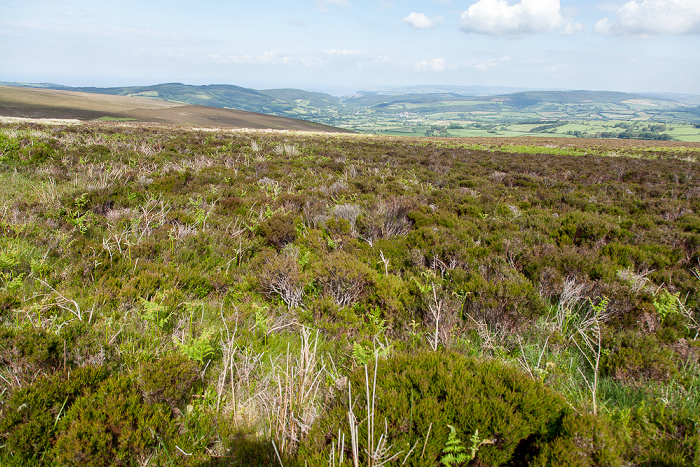 Exmoor National Park Dunkery Hill