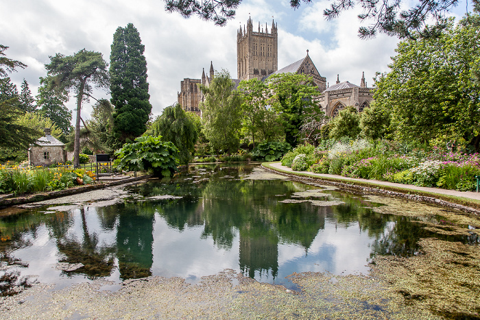 Bishop's Palace Gardens, The Well Pool, Wells Cathedral