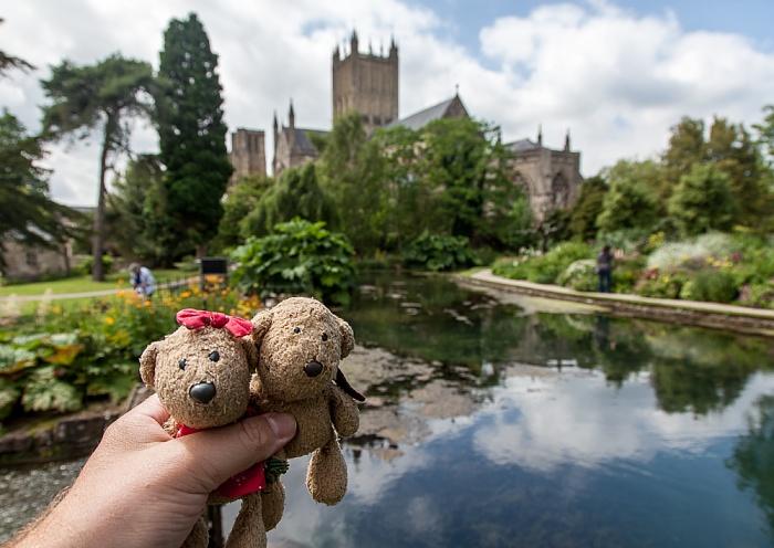 Wells Bishop's Palace Gardens: Teddine und Teddy Wells Cathedral