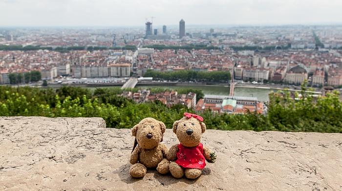 Lyon Fourvière: Teddy und Teddine La Part-Dieu Presqu'île Saône Vieux Lyon