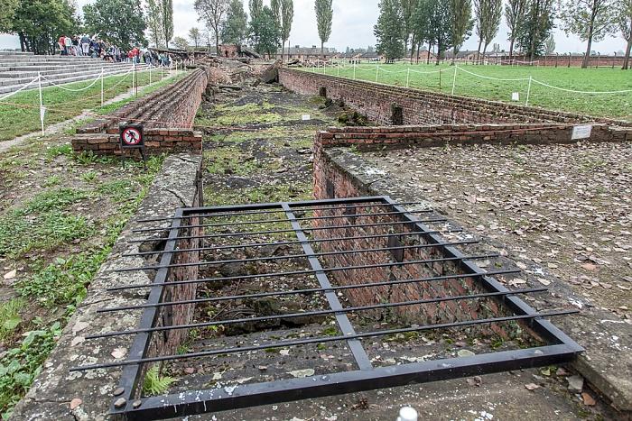 Staatliches Museum Auschwitz-Birkenau: Konzentrationslager Auschwitz-Birkenau - Gaskammern