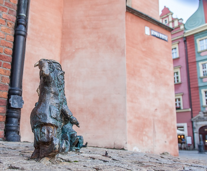 Stare Miasto: Großer Ring (Rynek) - Breslauer Zwerge