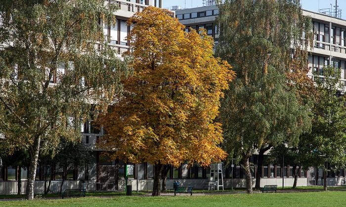 Kunstareal München (Maxvorstadt): Skulpturenpark der Pinakotheken