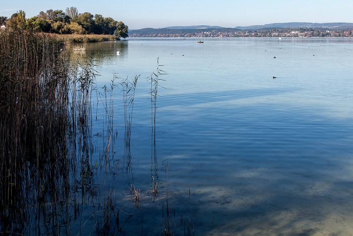 Insel Reichenau, Gnadensee (Untersee, Bodensee), Allensbach