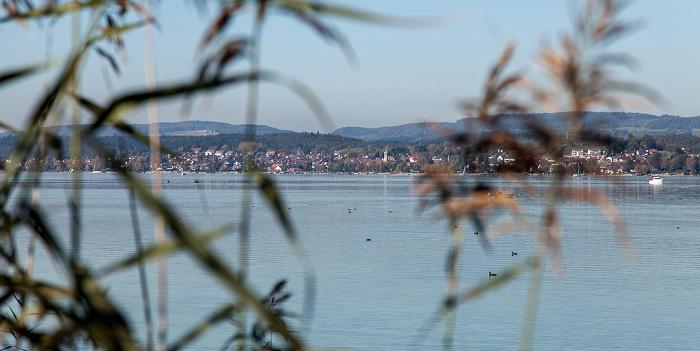 Reichenau Gnadensee (Untersee, Bodensee), Allensbach