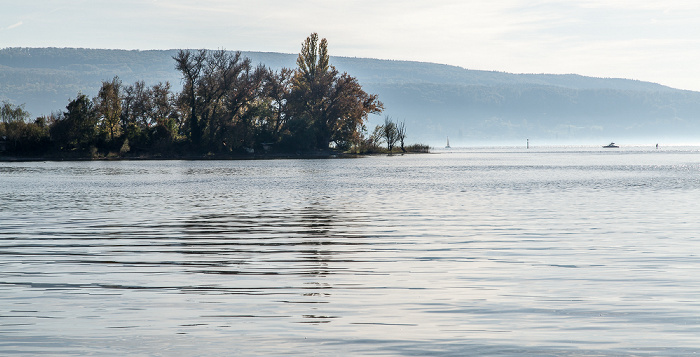 Reichenau Zeller See und Rheinsee (Untersee, Bodensee)