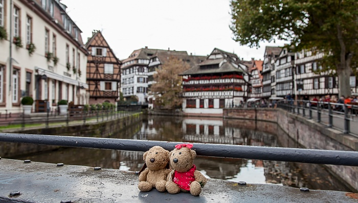 Straßburg Petite France: Teddy und Teddine Ill