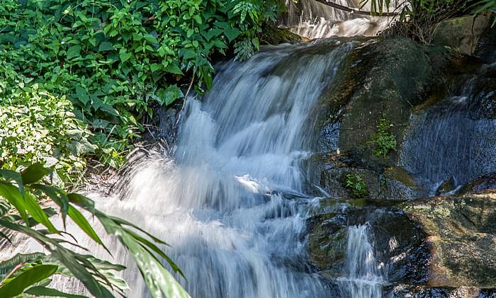 Victoria (Seychellen) Mont Fleuri Botanical Gardens: Wasserfall