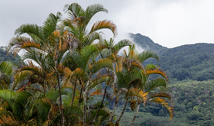 Mahé Morne Seychellois National Park
