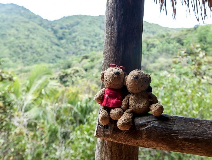 Praslin Vallée de Mai: Teddine und Teddy