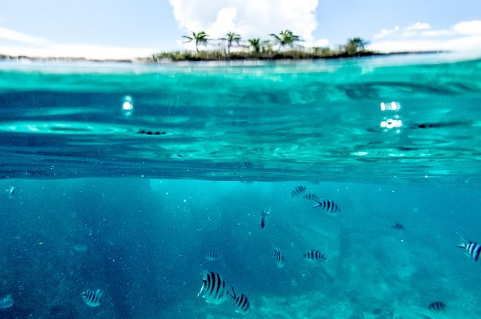 Indischer Ozean Île St. Pierre