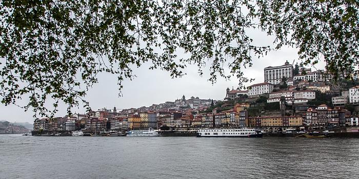 Douro, Porto Porto 2015