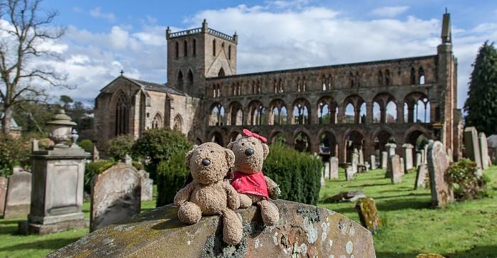 Jedburgh Abbey: Teddy und Teddine