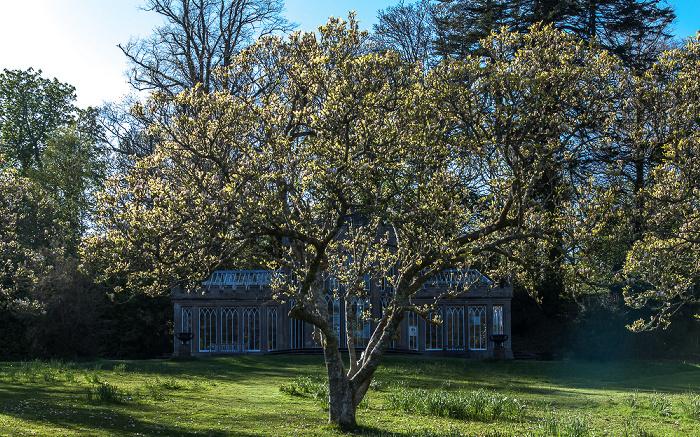 Maybole Culzean Castle Country Park Camellia House