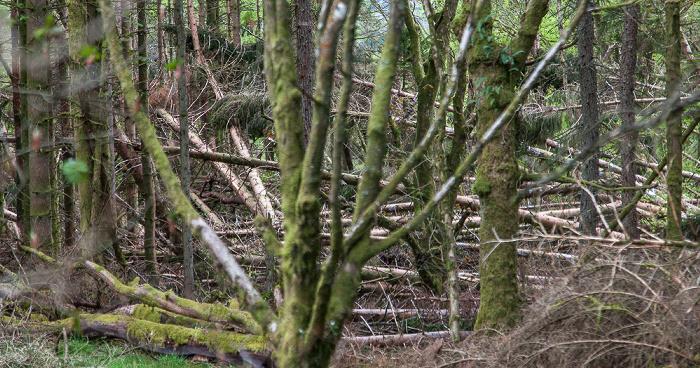 Callander Loch Lomond and The Trossachs National Park