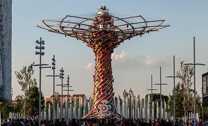 Mailand EXPO Milano 2015: Cardo und Baum des Lebens (Tree of Life, Alvero della Vita) Baum des Lebens EXPO 2015 Cardo EXPO 2015