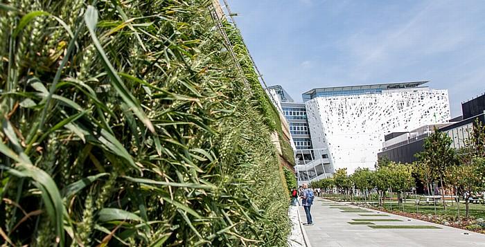 Mailand EXPO Milano 2015: Israelischer Pavillon - Vertical Field Israelischer Pavillon EXPO 2015