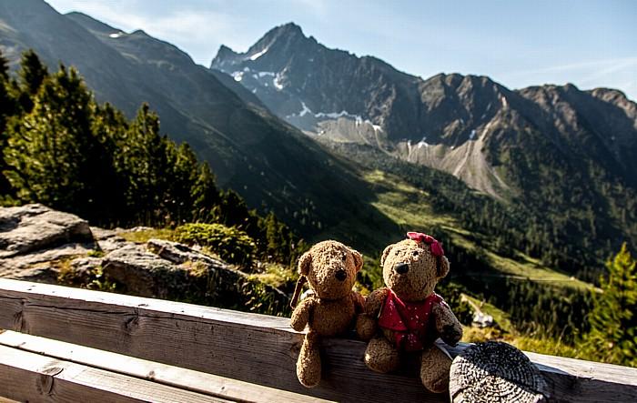 Hochoetz Bielefelder Hütte: Teddy und Teddine