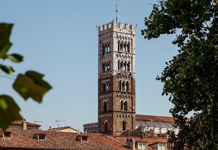 Blick vom Befestigungswall (Mura di Lucca): Cattedrale di San Martino