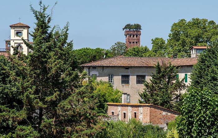 Blick vom Befestigungswall (Mura di Lucca): Torre Guinigi (rechts)