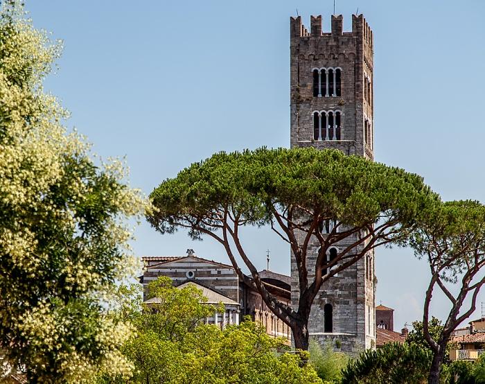 Blick vom Befestigungswall (Mura di Lucca): Basilica di San Frediano