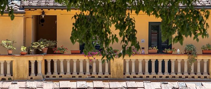 Blick vom Befestigungswall (Mura di Lucca)