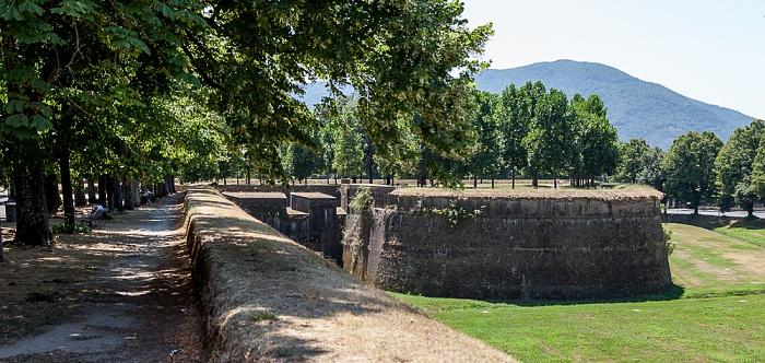 Befestigungswall (Mura di Lucca): Baluardo San Donato