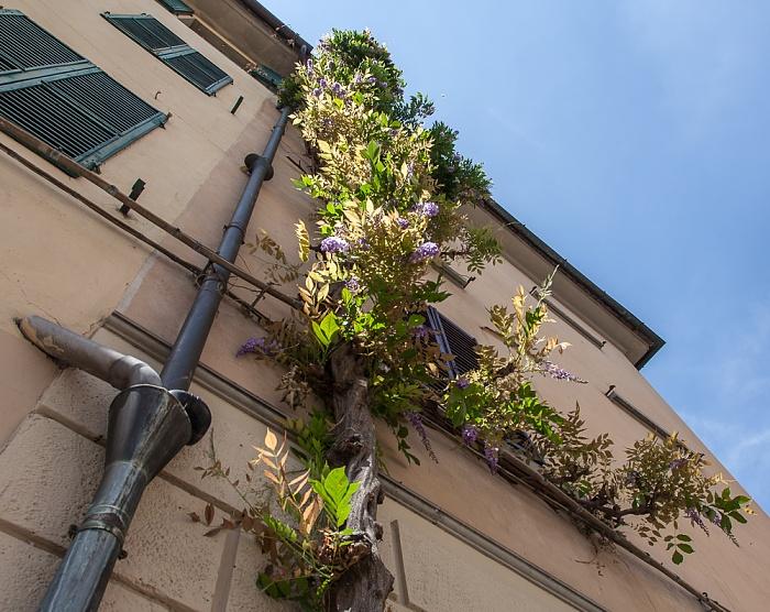 Pistoia Centro Storico: Piazza della Sala