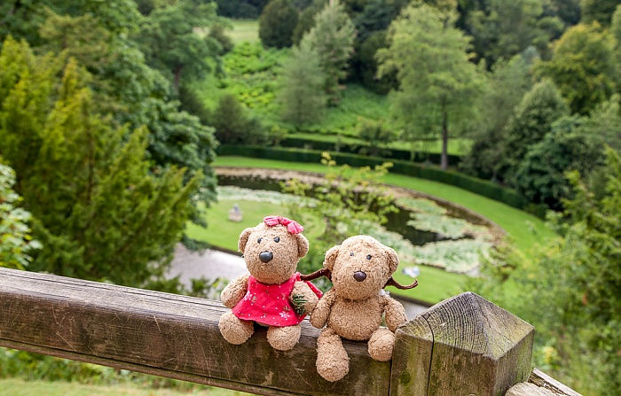 Ripon Studley Royal Water Garden: Teddine und Teddy