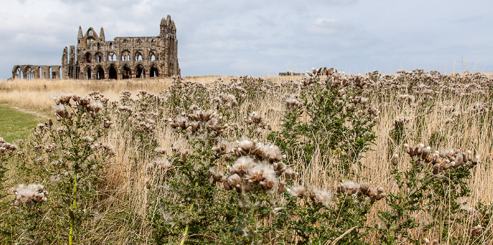 Whitby Whitby Abbey