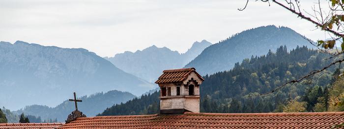 Tatzelwurm Mangfallgebirge