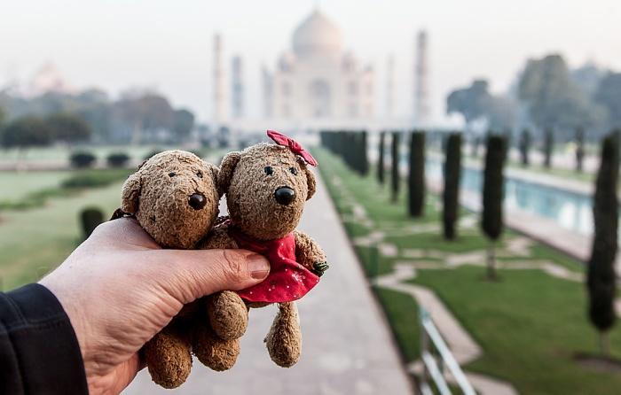Agra Taj Mahal: Teddy und Teddine