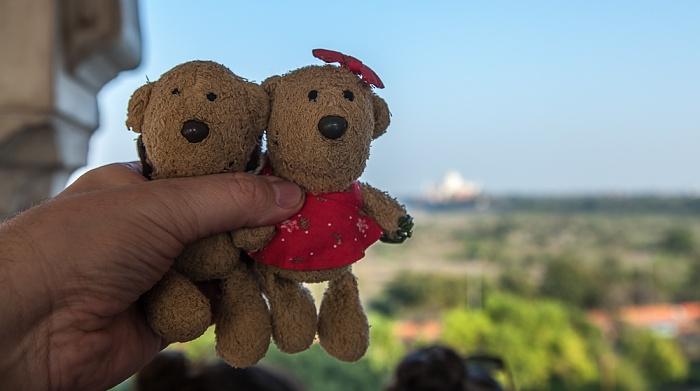 Agra Fort (Rotes Fort): Teddy und Teddine Taj Mahal